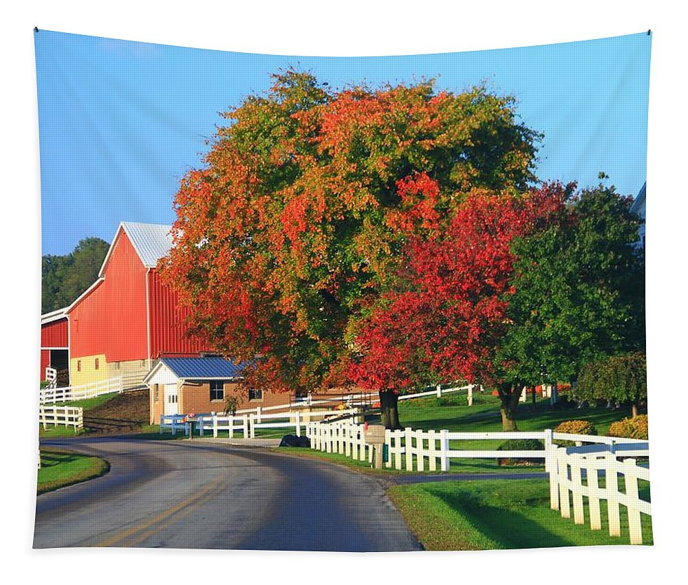 Amish Barn In Autumn Tapestry featuring the photograph Amish Barn In Autumn by Dan Sproul