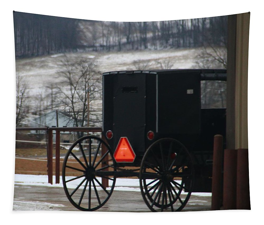 Amish Buggy In Winter Tapestry featuring the photograph Amish Buggy In Winter by Dan Sproul