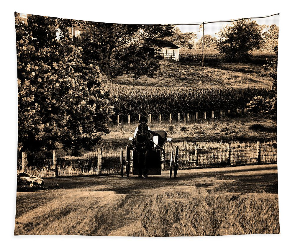 Amish Buggy On A Country Road Tapestry featuring the photograph Amish Buggy On A Country Road by Bill Cannon