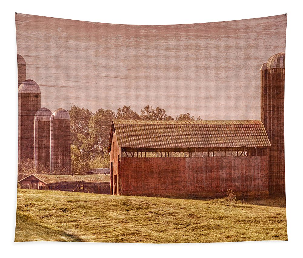 Appalachia Tapestry featuring the photograph Amish Farm by Debra and Dave Vanderlaan