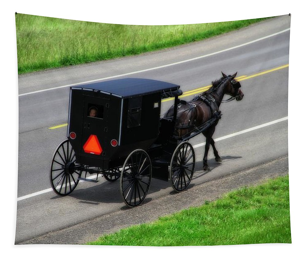 Amish Horse And Buggy In Ohio Tapestry featuring the photograph Amish Horse And Buggy In Ohio by Dan Sproul