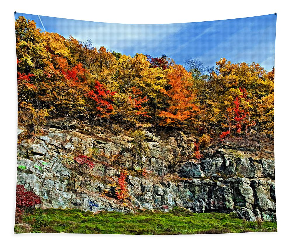 West Virginia Tapestry featuring the photograph An Autumn Day painted by Steve Harrington