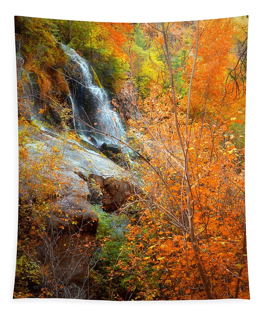 Autumn Tapestry featuring the photograph An Autumn Falls by Tara Turner