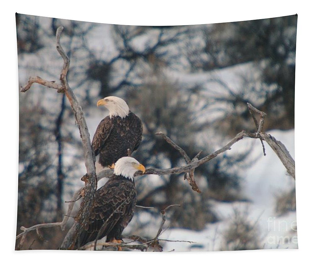 Eagles Tapestry featuring the photograph An Eagle Pair by Jeff Swan