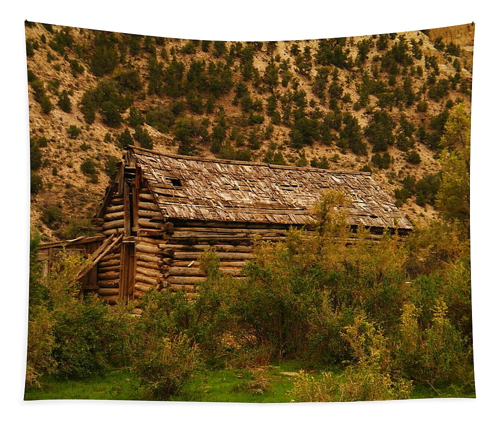 Cabins Tapestry featuring the photograph An Old Cabin In Utah by Jeff Swan
