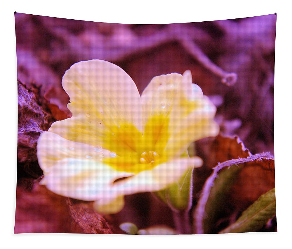 Flowers Tapestry featuring the photograph An Open Bud by Jeff Swan