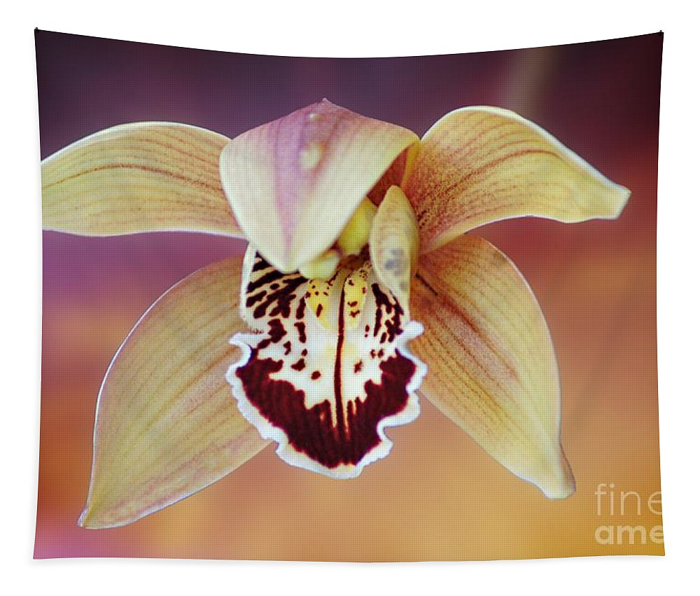 Flower Tapestry featuring the photograph An Orchid by Ben Yassa