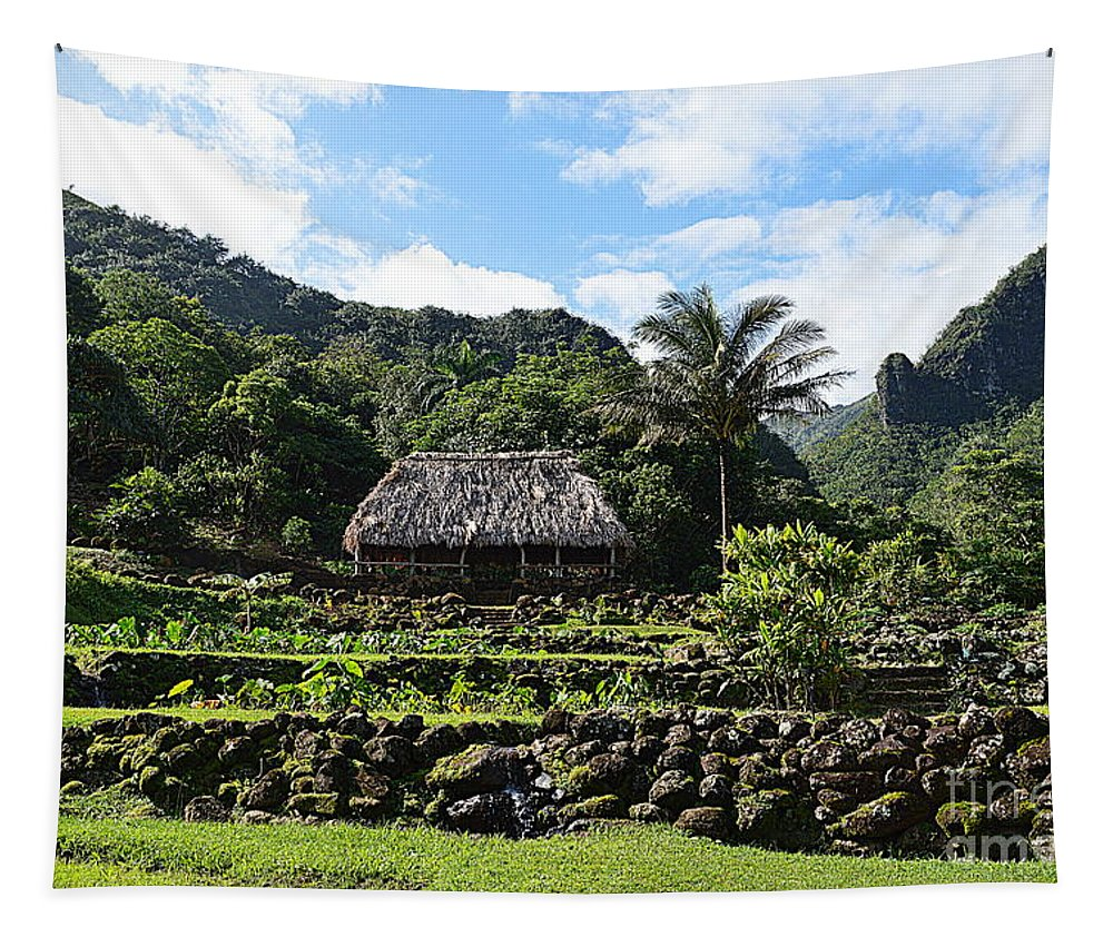 Limahuli Tapestry featuring the photograph Ancient Taro Gardens In Kauai by Catherine Sherman