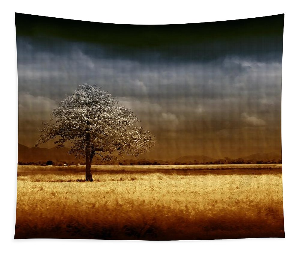 Landscapes Tapestry featuring the photograph And The Rains Came by Holly Kempe