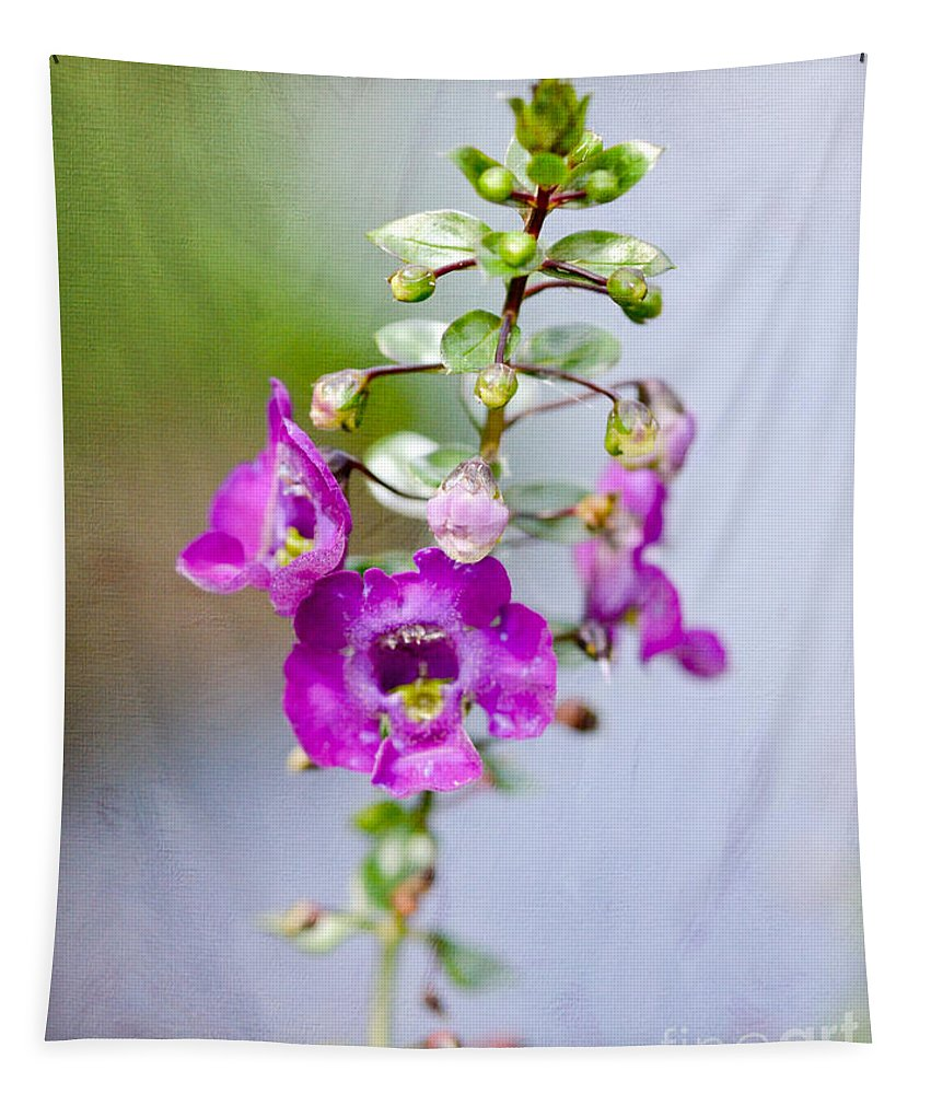 Angelface Flower Tapestry featuring the photograph Angel Face Flower - Summer Snapdragon by Kerri Farley