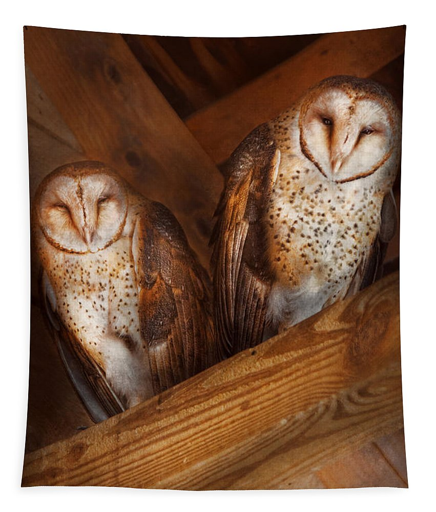 Savad Tapestry featuring the photograph Animal - Bird - A Couple Of Barn Owls by Mike Savad