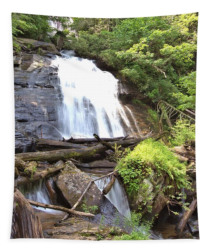 8815 Tapestry featuring the photograph Anna Ruby Falls - Georgia - 4 by Gordon Elwell