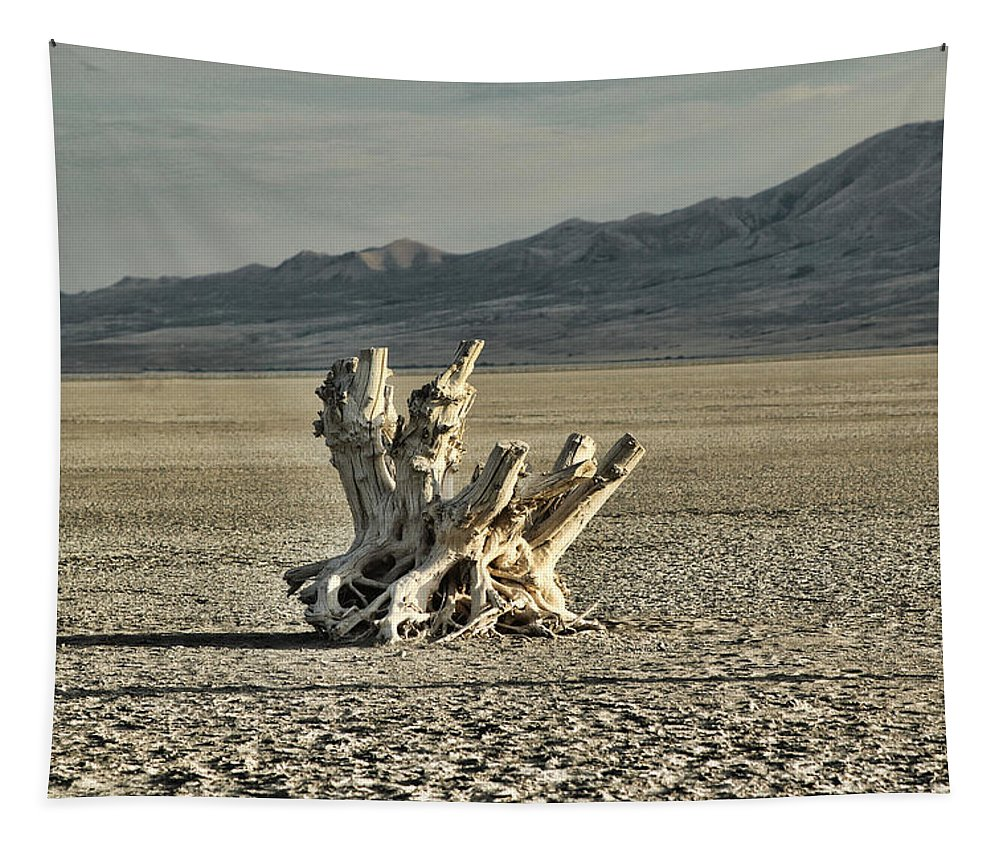 Antelope Island White Rock Bay Tapestry featuring the photograph Antelope Island Stump by Ely Arsha