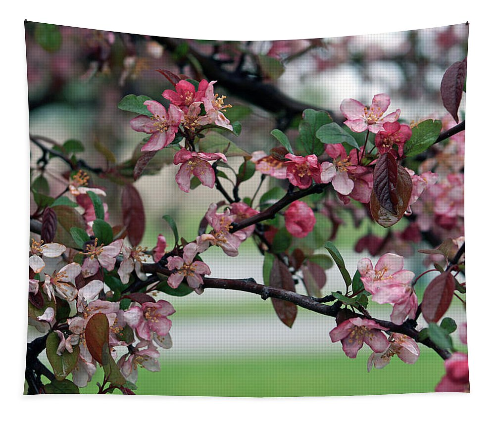 Spring Tapestry featuring the photograph Apple Blossom Time by Kay Novy