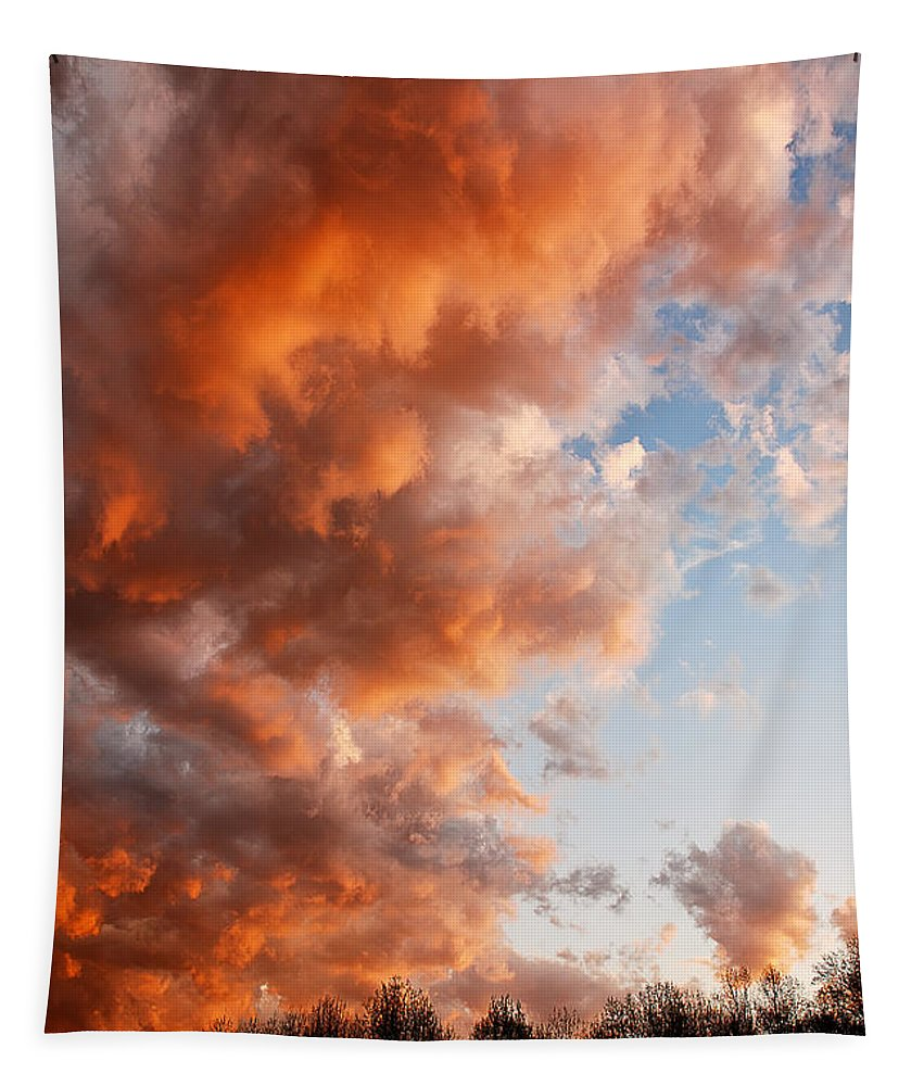 Clouds Tapestry featuring the photograph Approaching Glory by Lois Bryan