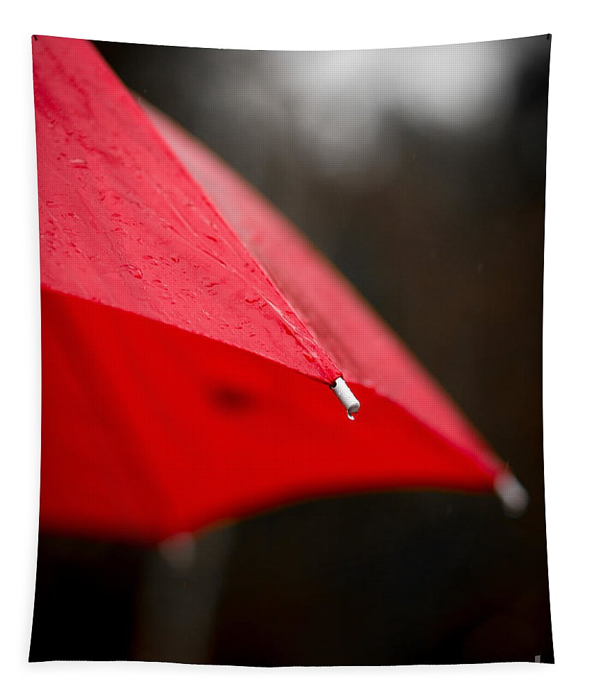 Red Tapestry featuring the photograph April Showers Bring May Flowers by Edward Fielding