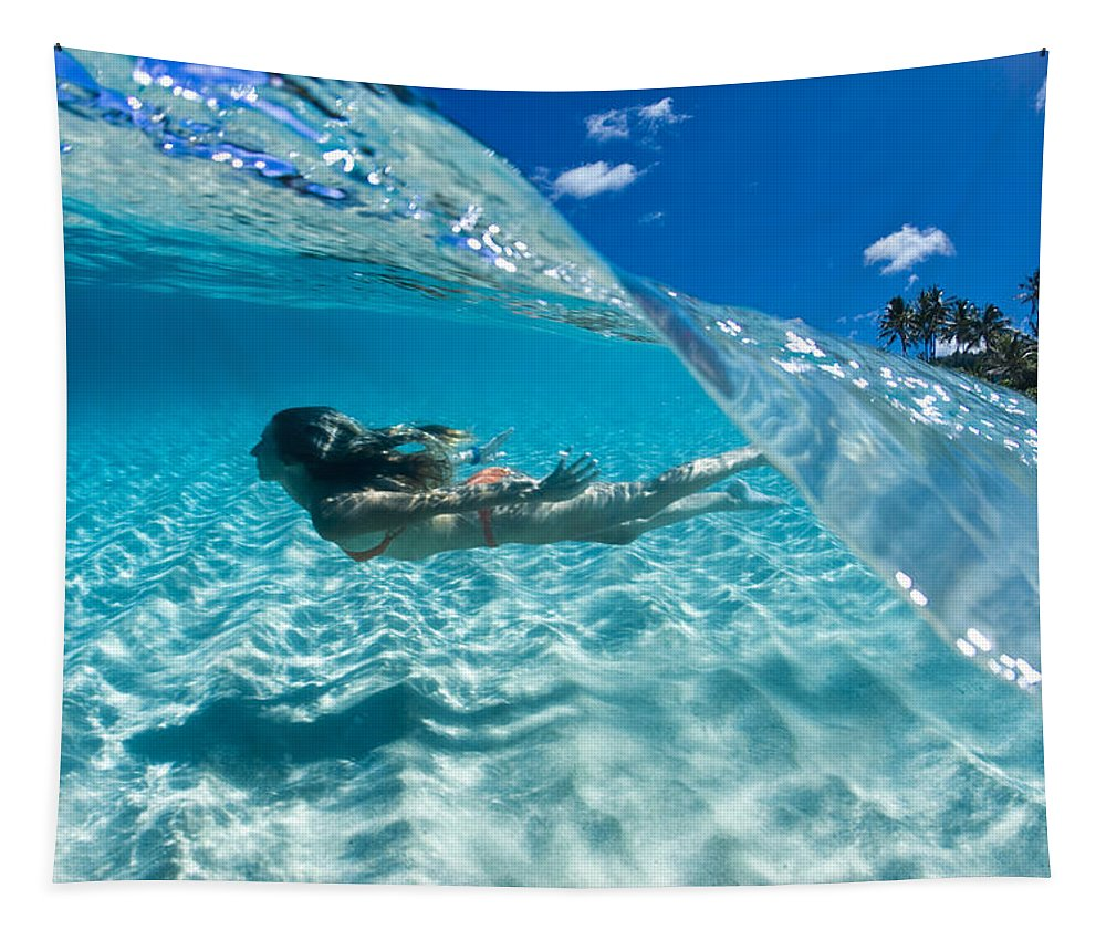 Underwater Tapestry featuring the photograph Aqua Dive by Sean Davey