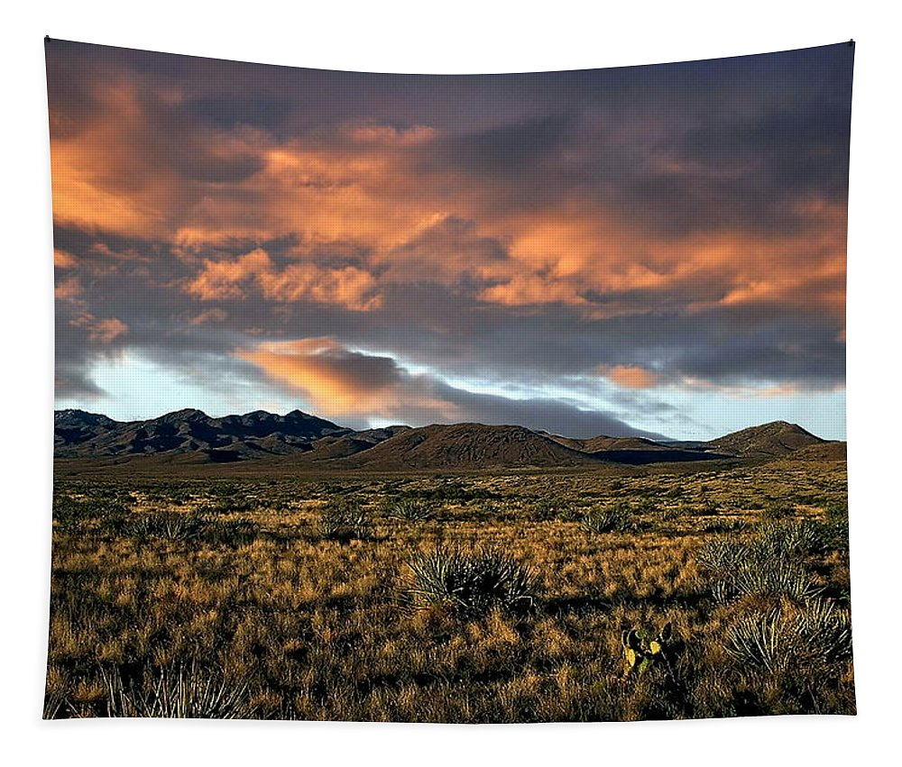 Sunset Tapestry featuring the photograph Arizona Landscape by Anthony Dezenzio