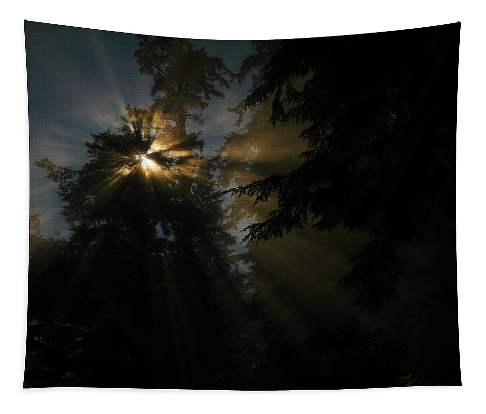 Sun Rays Tapestry featuring the photograph As If I Needed Some Inspiration by Jeff Swan