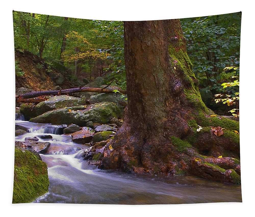 River Tapestry featuring the photograph As The River Runs by Karol Livote