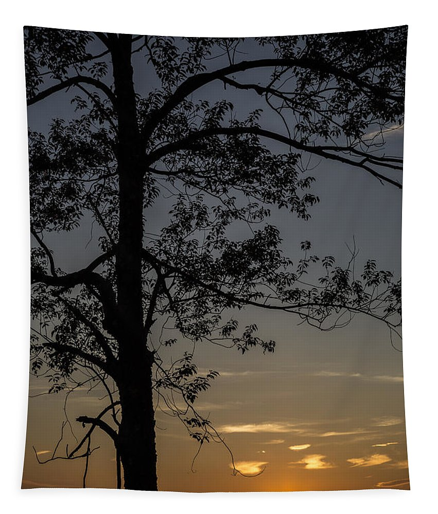 Sunset Tapestry featuring the photograph As The Sun Fades Behind The Mountian by Karol Livote