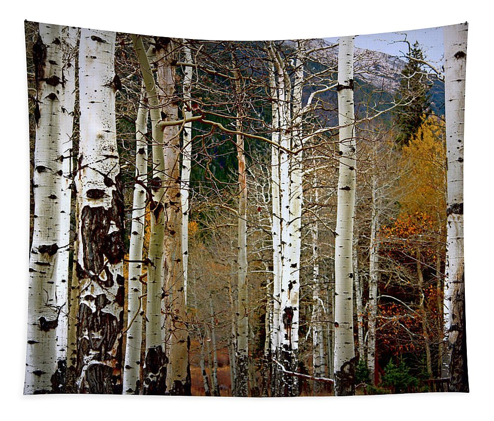 Aspen Tapestry featuring the photograph Aspen In The Rockies by Lynn Sprowl