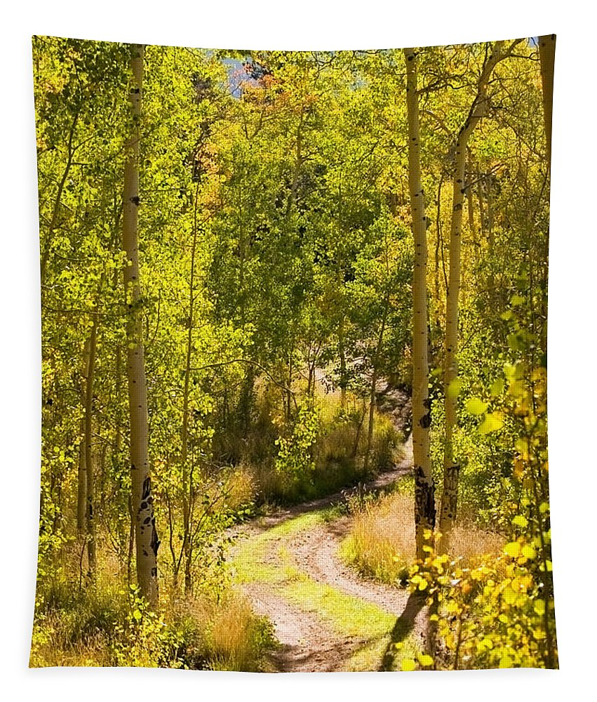 Colorado Tapestry featuring the photograph Aspen Trail by Steve Krull