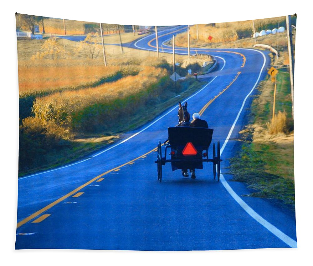 Autumn Amish Buggy Ride Tapestry featuring the photograph Autumn Amish Buggy Ride by Dan Sproul
