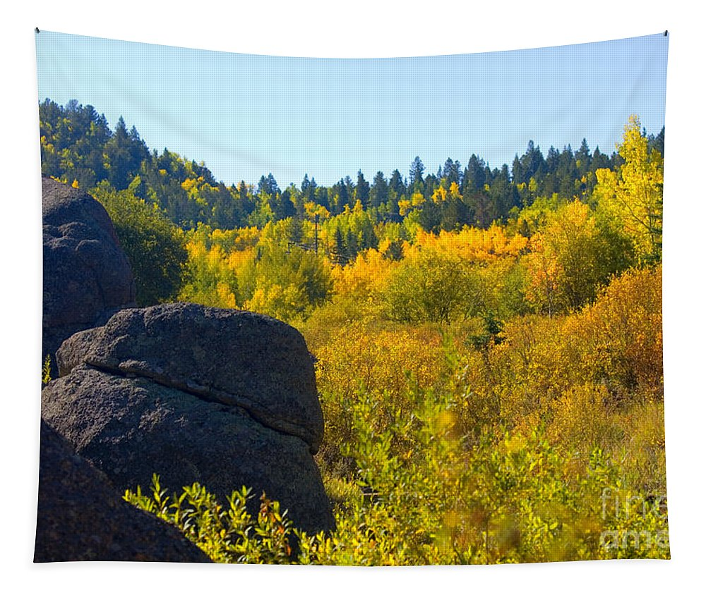 Aspen Leaves Tapestry featuring the photograph Autumn Aspen Trees by Steve Krull