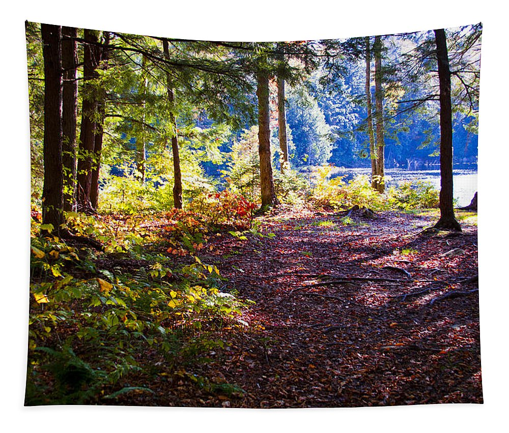 Adirondack's Tapestry featuring the photograph Autumn At Cary Lake by David Patterson
