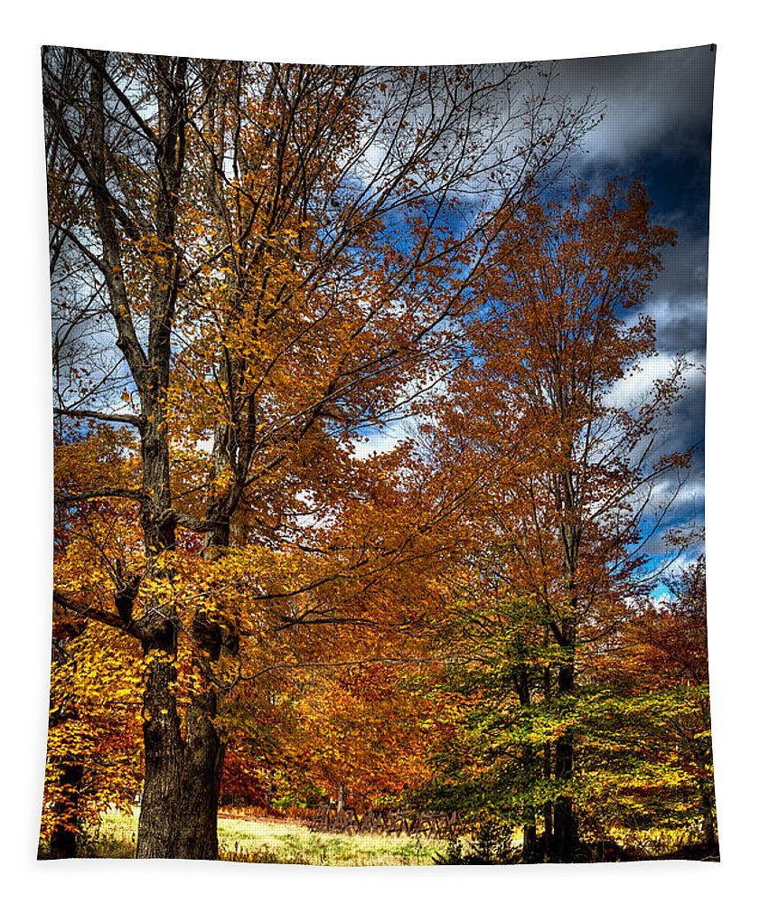 Adirondack's Tapestry featuring the photograph Autumn At Mc Cauley Mountain by David Patterson
