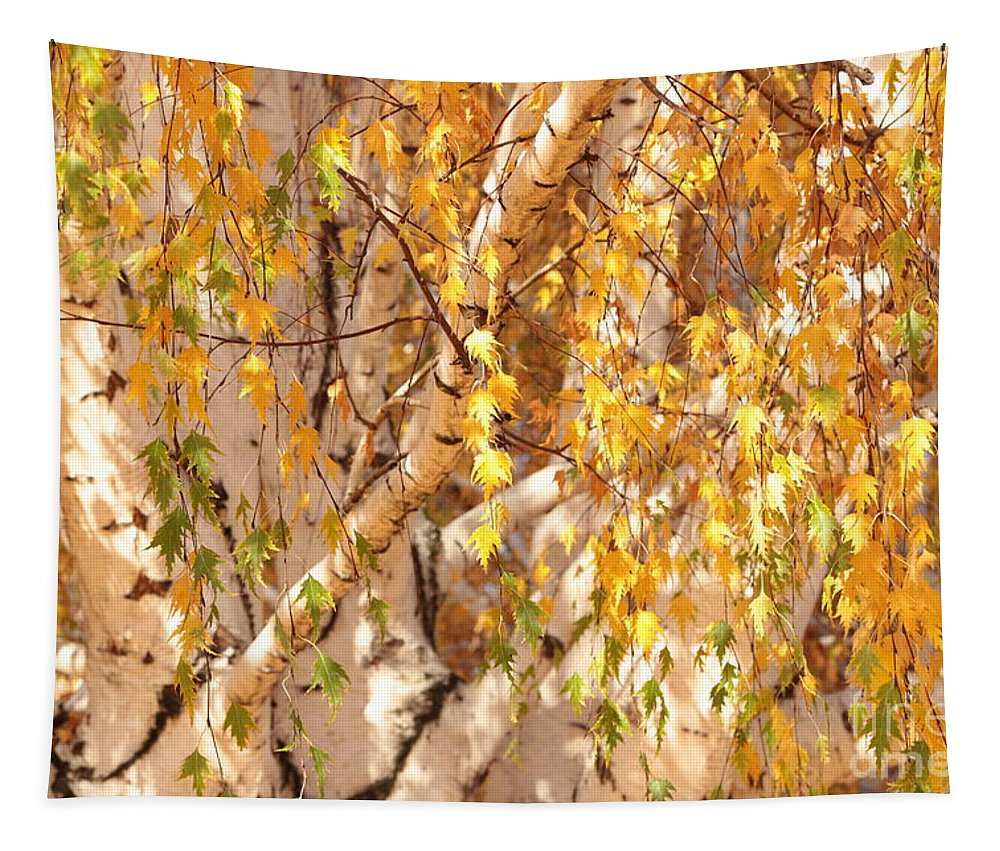 Autumn Birch Leaves Tapestry featuring the photograph Autumn Birch Leaves by Carol Groenen
