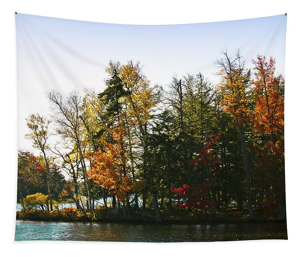 Adirondack's Tapestry featuring the photograph Autumn Color On The Fulton Chain Of Lakes by David Patterson