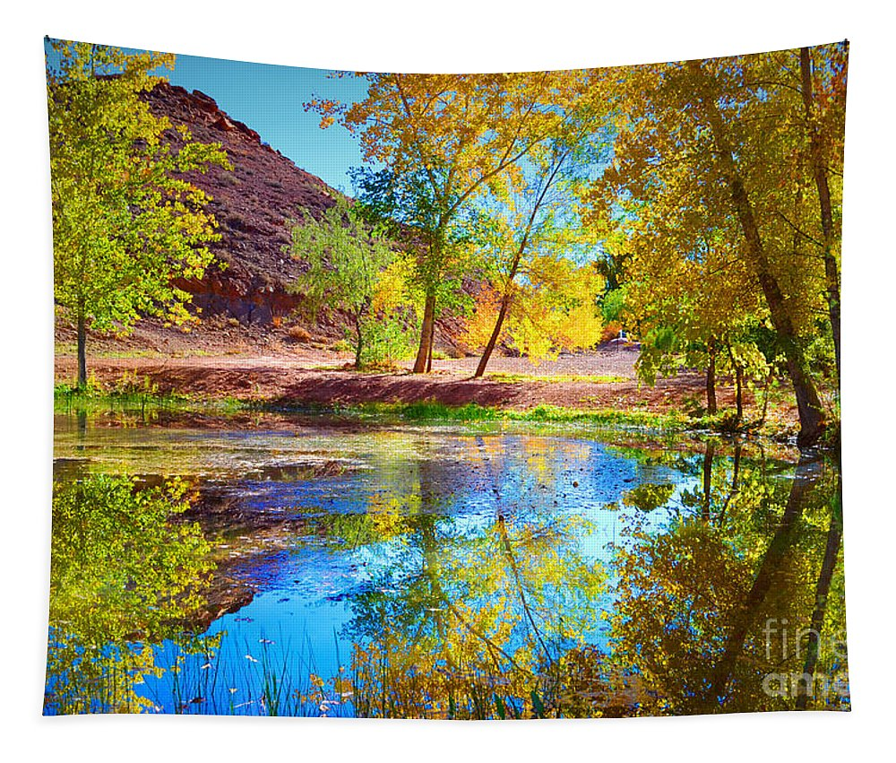 Autumn Tapestry featuring the photograph Autumn Colours In Moab by Tara Turner