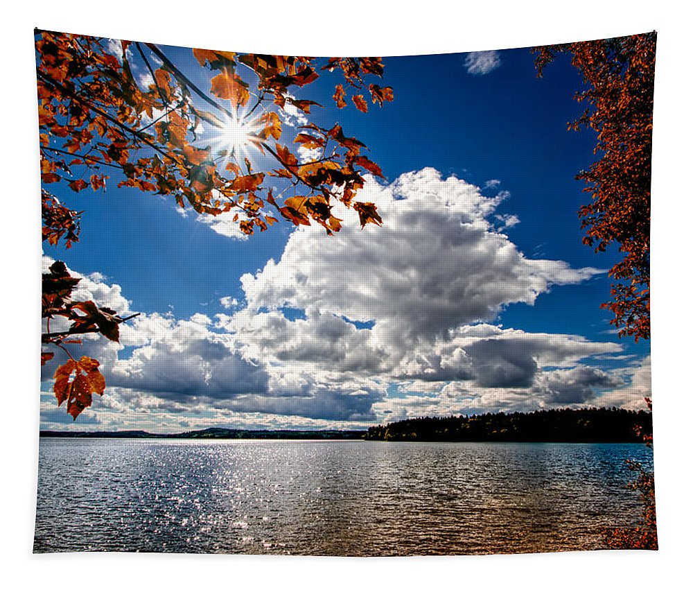 Landscape Tapestry featuring the photograph Autumn Confidential by Bob Orsillo