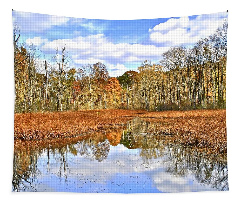 Autumn Tapestry featuring the photograph Autumn Fades by Frozen in Time Fine Art Photography