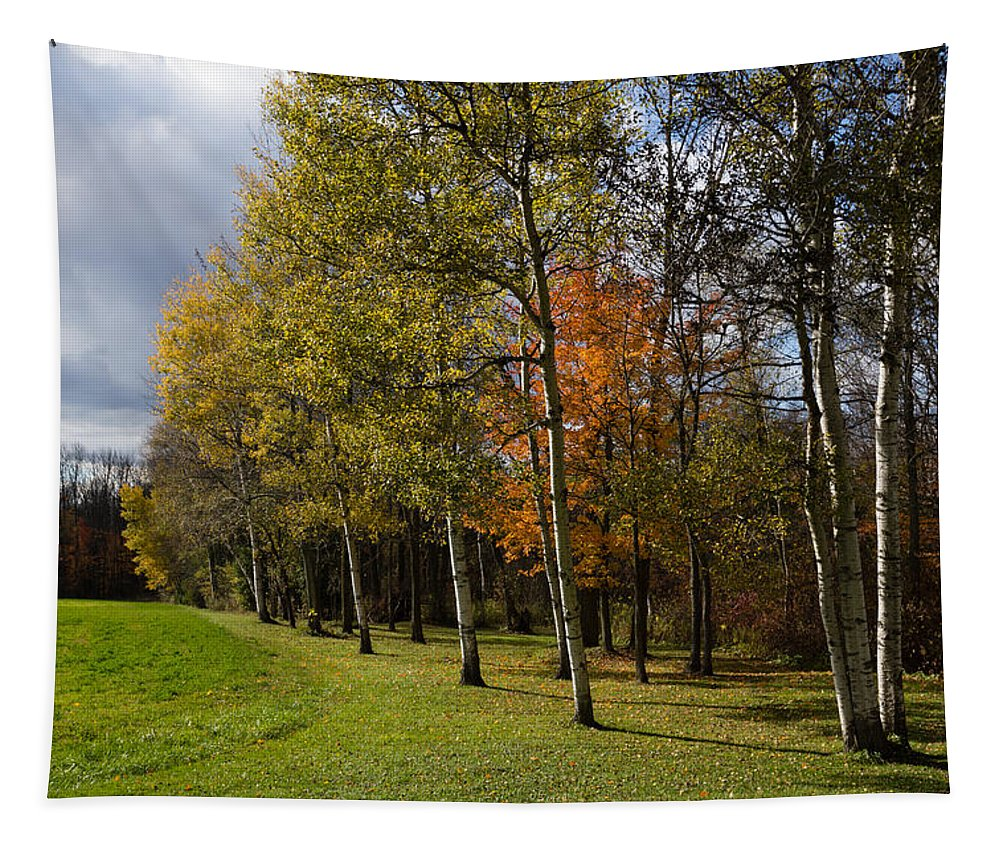 Autumn Forests Tapestry featuring the photograph Autumn Forests And Fields by Georgia Mizuleva
