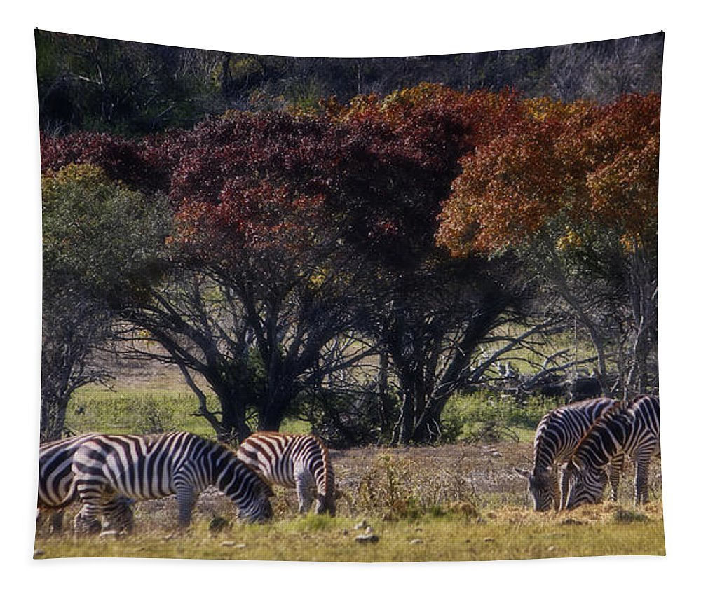 Animal Tapestry featuring the photograph Autumn Grazing by Joan Carroll