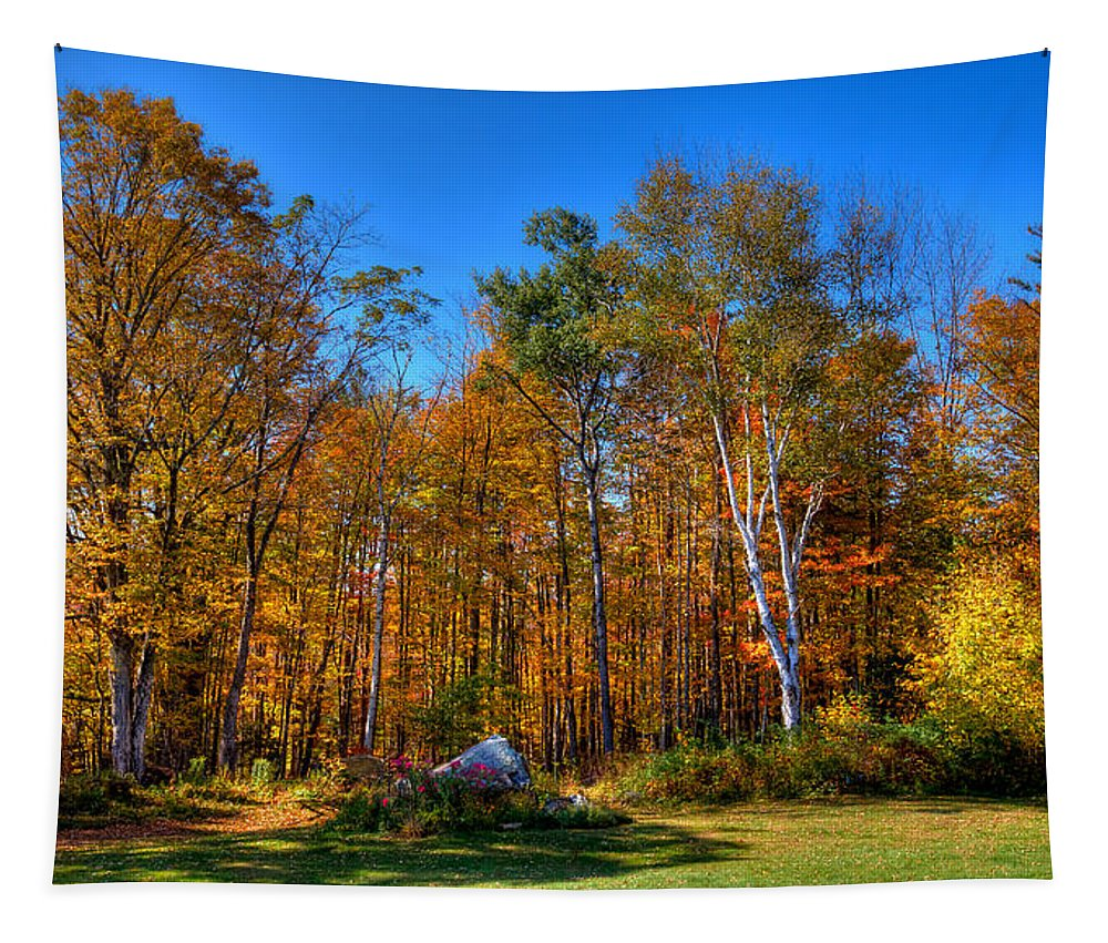 Adirondack's Tapestry featuring the photograph Autumn In North River New York by David Patterson
