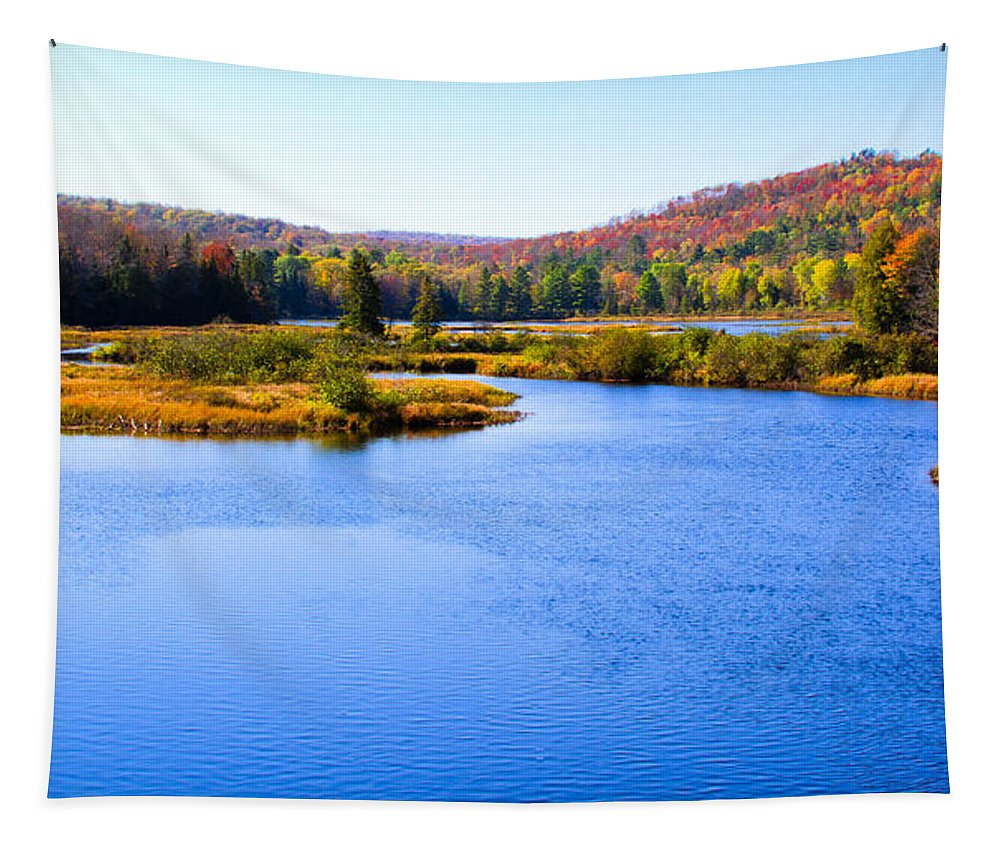 Adirondack's Tapestry featuring the photograph Autumn In The Adirondacks IIi by David Patterson