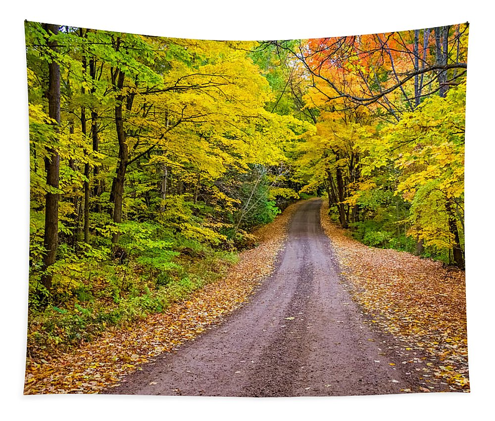 2014 Tapestry featuring the photograph Autumn Journey by Steve Harrington