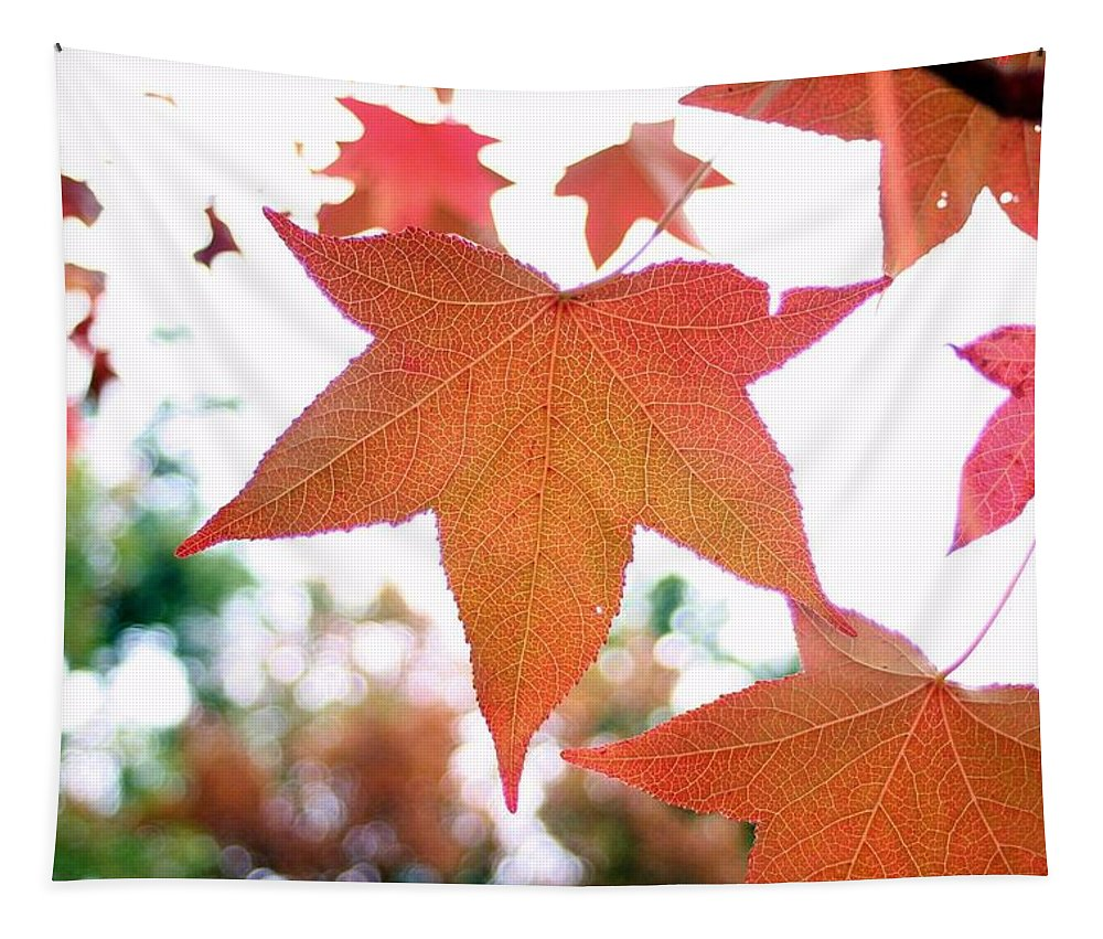 Landscape Tapestry featuring the photograph Autumn Leaf by Karen Silvestri