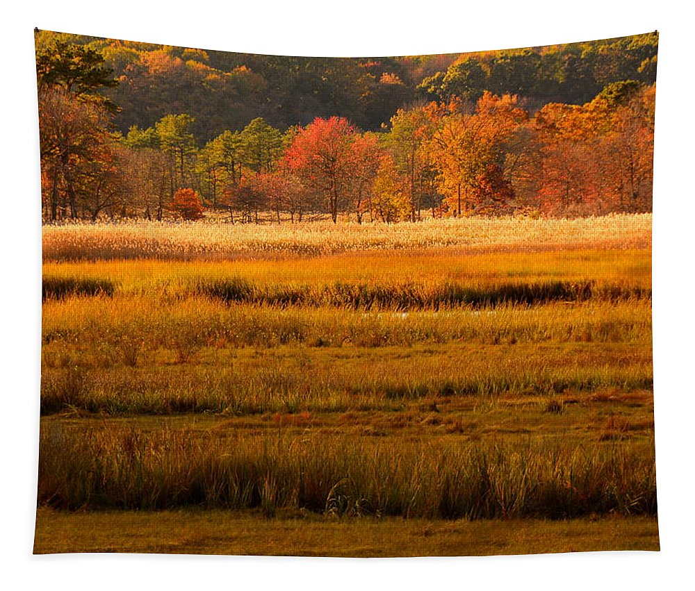 Cheesequake Tapestry featuring the photograph Autumn Marsh by Raymond Salani III