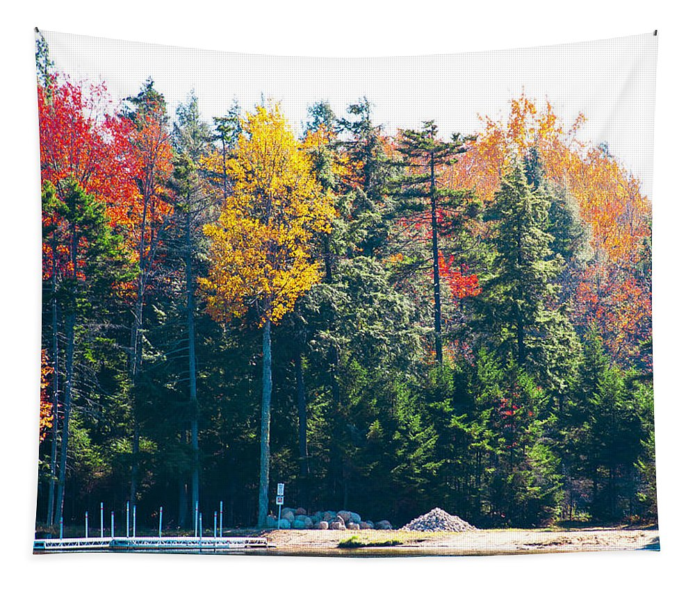 Adirondack's Tapestry featuring the photograph Autumn On The Fulton Chain Of Lakes In The Adirondacks II by David Patterson
