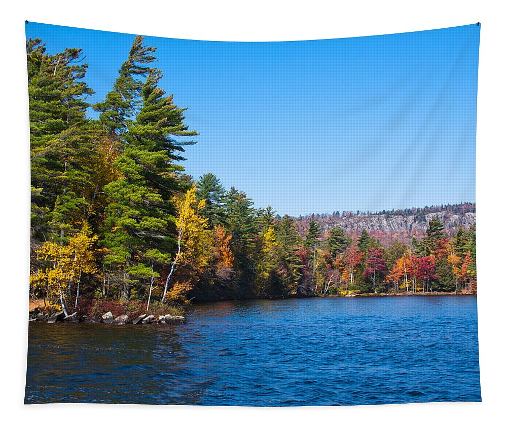 Adirondack's Tapestry featuring the photograph Autumn On The Fulton Chain Of Lakes In The Adirondacks IIi by David Patterson