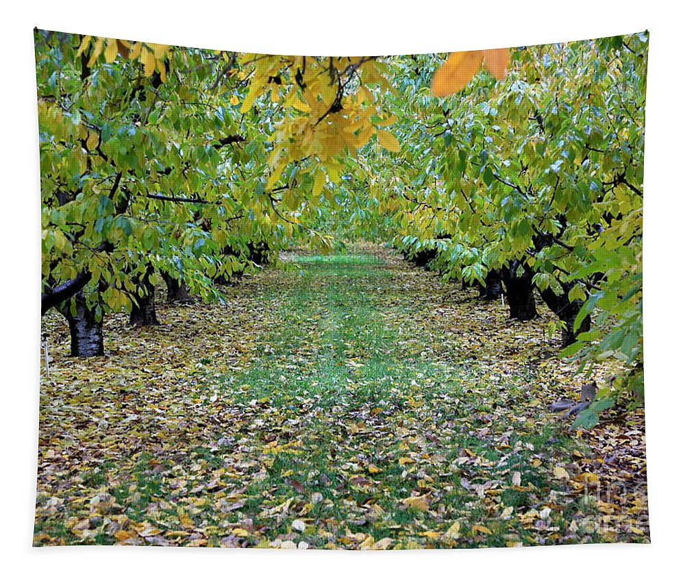 Tapestry featuring the photograph Autumn Orchard by Carol Groenen