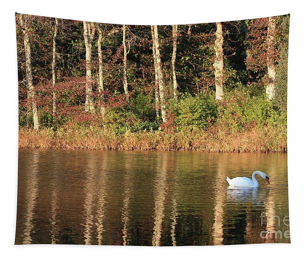 Autumn Tapestry featuring the photograph Autumn Pond Sunset With Swan by Carol Groenen