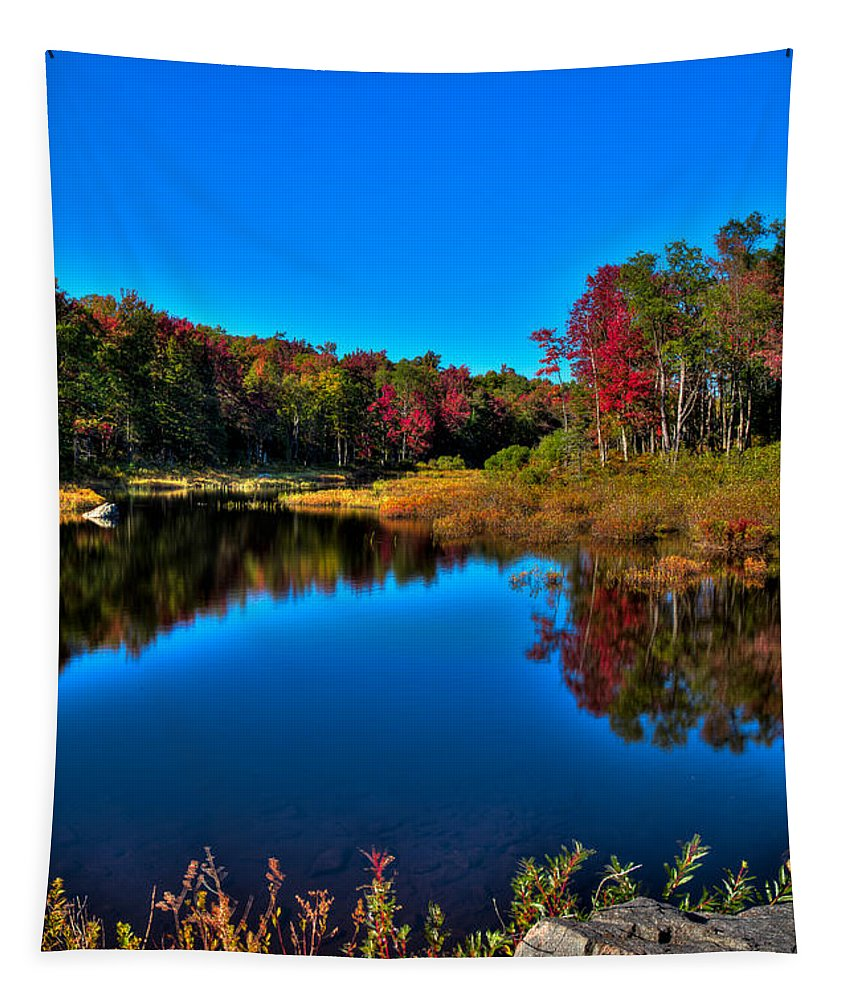 Adirondack's Tapestry featuring the photograph Autumn Reflections In The Adirondacks by David Patterson