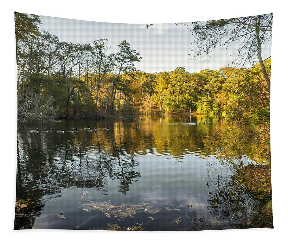 2d Tapestry featuring the photograph Autumn Retreat by Brian Wallace