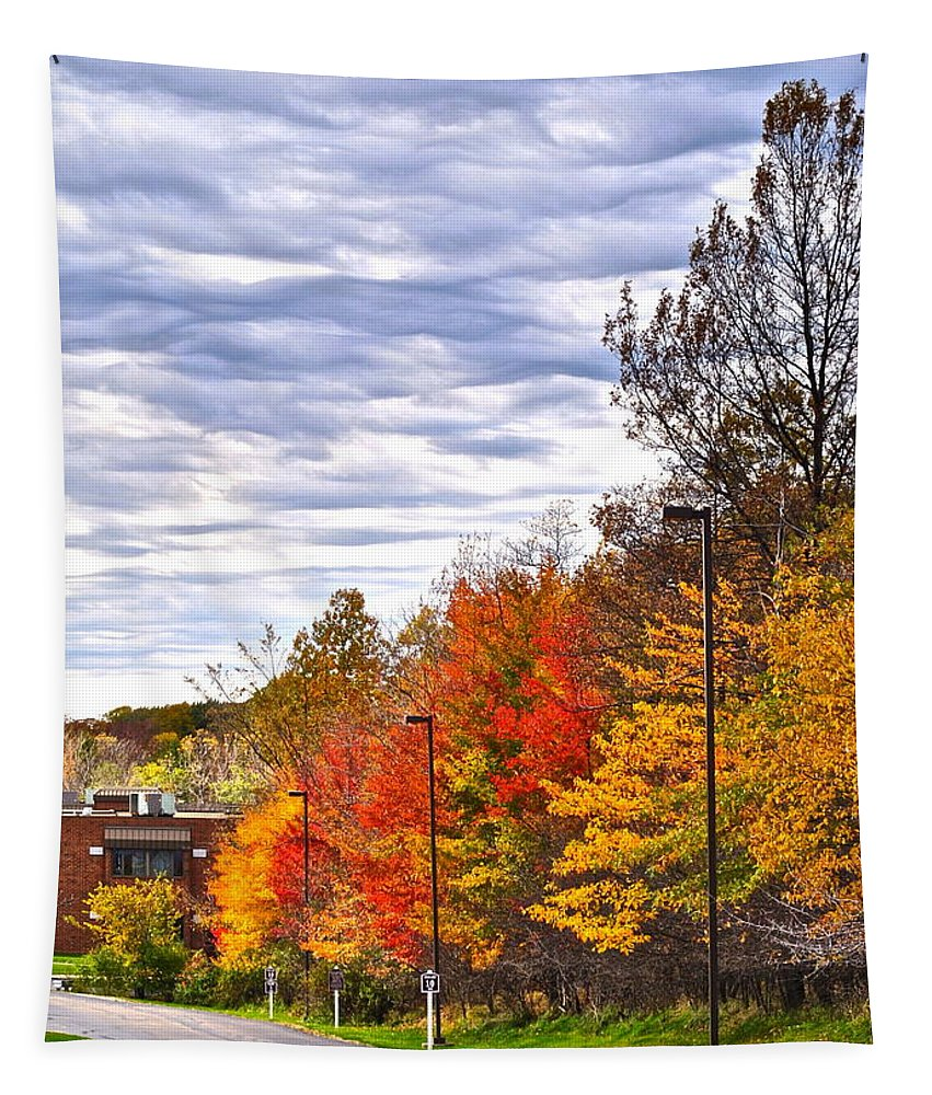 Autumn Tapestry featuring the photograph Autumn Sky by Frozen in Time Fine Art Photography
